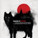 Przejdź do Shadows of Cracow IV: Po drugiej stronie